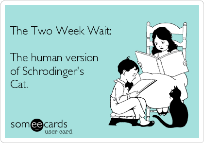 the-two-week-wait-the-human-version-of-schrodingers-cat-9b530