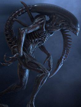 cc66544508d2f42a109c082377c796ed--alien-vs-predator-horror-movies
